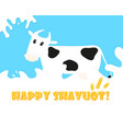 jewish holiday of shavuot greeting card vector image