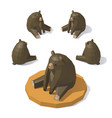 low poly brown bear vector image
