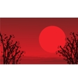 On red background bamboo scenery vector image vector image