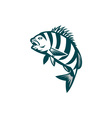 Sheepshead Fish Jumping Isolated Retro vector image vector image