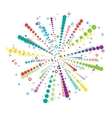 Big colorful firework vector image vector image