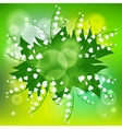 Card with field of lily-of-the-valley flowers vector image vector image