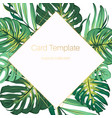 exotic tropical jungle palm tree monstera green vector image vector image