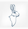 hare animal wild one line design vector image