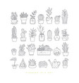 icon plants in pots vector image vector image