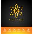 Organic Leaves Logo vector image