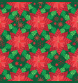 red poinsettia with snowflakes and stars vector image