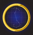 scorpio star horoscope zodiac in fish eye vector image vector image
