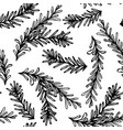 seamless endless pattern of rosemary branch vector image vector image