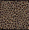 beige and brown leopard fashion seamless pattern vector image