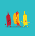 fast food hot dog ketchup and mustard vector image