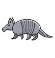 gray armadillo animal vector image