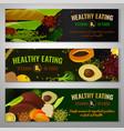 healthy food vitamin b9 vector image vector image