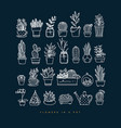 icon plants in pots dark blue vector image vector image