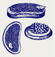 Sandwich with butter and caviar vector image vector image
