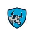 Texas Longhorn Bull Head Shield Retro vector image vector image