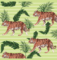 tiger drawing pattern background vector image