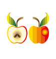 colorful apple vector image vector image