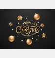 merry christmas and happy new year luxury card vector image