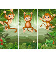 set of three monkeys in the forest vector image vector image