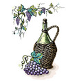 watercolor bottle of wine in wicker basket and vector image