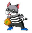 cartoon cat thief dressed in dark mask holding vector image