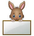 cartoon little bunny holding an empty sign vector image vector image