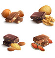 Chocolate With Nuts vector image vector image