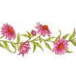 echinace purpurea pattern vector image vector image