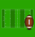 football field american ball vector image