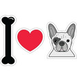 I love french bulldog in color plain vector image