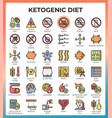 ketogenic diet concept icons vector image