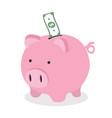 piggy bank with dollar banknote vector image