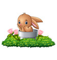 cartoon rabbit in the hole vector image vector image