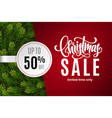 christmas holiday sale 50 percent off vector image