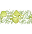 fennel pattern vector image vector image