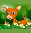 little fawn in flower garden vector image vector image