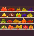 stall or stand with fruits and prices vector image vector image