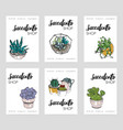 succulents shop advertising cards collection vector image vector image