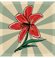 vintage grunge background with lily vector image vector image
