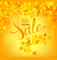 autumn sale poster with vector image vector image