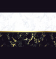 black and white marble background with gold vector image vector image