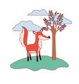fox cartoon in forest next to the trees in vector image vector image