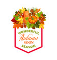 autumn maple leaf pumpkin harvest poster vector image vector image