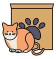 cute cat mascot with carton box and footprint vector image