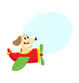 funny dog puppy pilot character flying on vector image vector image