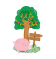 garden with wooden arrow signal and pig vector image