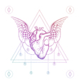Heart with wings boho color dotwork tattoo vector image vector image
