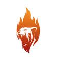 lion fire logo template vector image