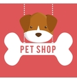 Pet shop center icon